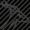 animal, finance, fintech, gazelle, startup icon