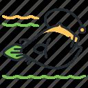 anglerfish, fish, sea, species icon
