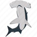 fish, food, hammerhead shark, sea, seafood, shark icon