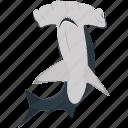 fish, food, hammerhead shark, sea, seafood, shark icon
