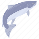 fish, food, kitchen, meal, salmon, sea, seafood icon