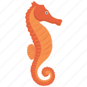 fish, food, horse, sea, sea horse, seafood icon