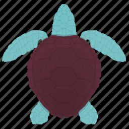 fish, food, sand, sea, seafood, turtle icon