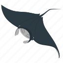 fish, food, sea, seafood, stingray icon