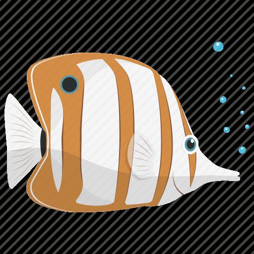 fish, food, sea, seafood, tropical icon