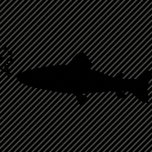 animal, fish, fishing, fishy, sea, seafood, wild icon