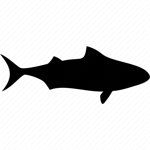 fish, ocean, sea, shark, shark attack, shark fin, shark warning icon