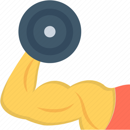 Fitness, biceps, dumbbell, bodybuilder, muscle icon - Download