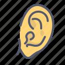ear, noise, organ, sense, sound