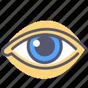 eye, organ, see, sense, sight, watch icon