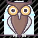 animal, aves, creature, owl, owl animal, specie, wisdom animal icon