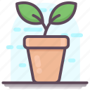 decorative flower, flower pot, interior decoration, plant pot icon