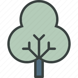 decidious, ecology, forest, tree icon