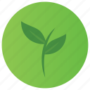agriculture, ecology, environment, green petals, leaves icon