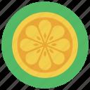 bittersweet, citrus fruit, food, fruit, orange icon