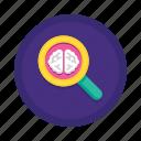 brain, content, insight, knowledge, marketing, research, search icon