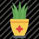 aloe vera, decorative plant, house plant, indoor plant, outdoor plant, plant, potted plant icon