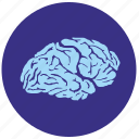 brain, head, health, mind, round, view icon