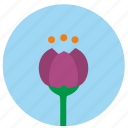 beauty, bud, flower, sky icon