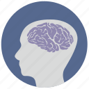 brain, head, health, mind, round, think, view icon