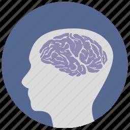 brain, head, health, mind, round, think, view icon