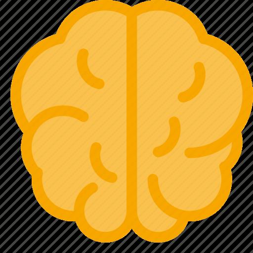 brain, health, intelligent, medical, neurology icon