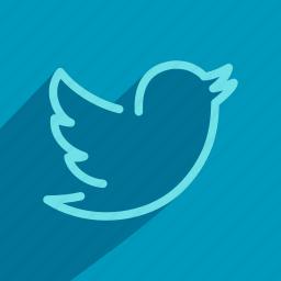 media, network, social, socialmedia, tweet, twitter icon