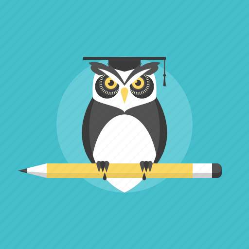 education, graduation, illustration, knowledge, learning, owl, school, smart, study, university, web, wisdom icon