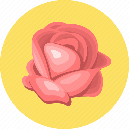 flower, nature, plant, rose icon