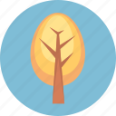 environment, forest, nature, plant, tree icon