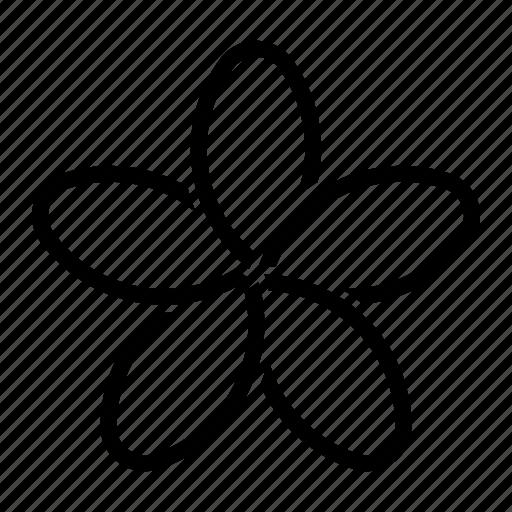 bloom, flower, porcelain icon