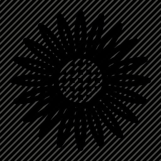 bloom, power, sunflower icon