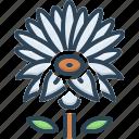 aquatic, blue water lily, botanical, flower, lilium, martagon, meditation