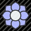 bloom, blossom, flower, petal, spring icon