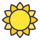 bloom, blossom, floral, flower, petal, sunflower icon