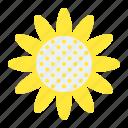 daisy, floral, flower, garden, petal, sunflower icon