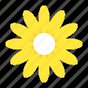 bloom, blossom, floral, flower, petal icon