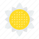 bloom, blossom, floral, flower, petal, spring, sunflower icon