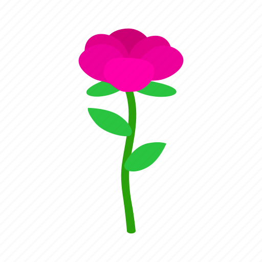 floral, flower, isometric, nature, plant, rose, spring icon