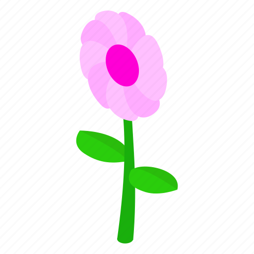 floral, flower, isometric, nature, plant, spring, summer icon