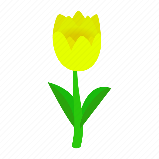 floral, flower, isometric, nature, plant, spring, tulips icon