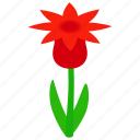 floral, flower, isometric, nature, plant, red, spring icon