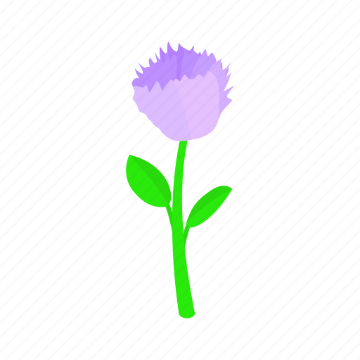 floral, flower, isometric, nature, plant, spring, violet icon