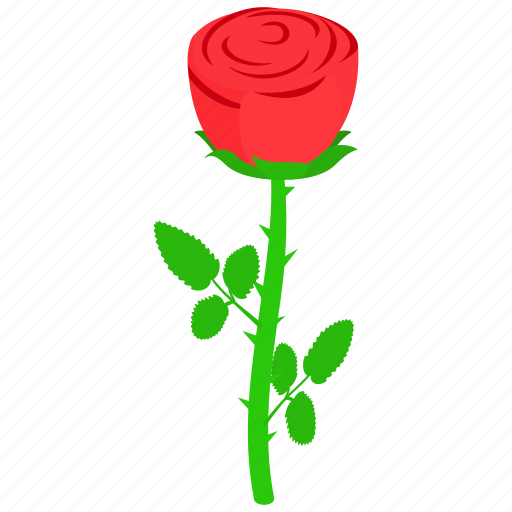 floral, flower, isometric, nature, plant, red, rose icon