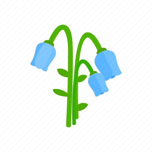 bellflower, blue, floral, flower, isometric, nature, plant icon