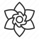 bloom, blossom, floral, flower, petal, spring icon