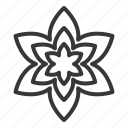 blossom, floral, flower, petal, spring icon