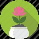 floral, flower, flowerpot, garden, lotus, nature, plant icon