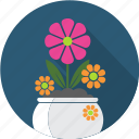 floral, flower, flowerpot, garden, nature, plant, rose icon
