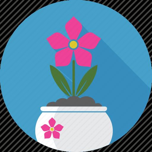 floral, flower, flowerpot, garden, nature, plant, rose icon